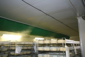 Humidification fromages